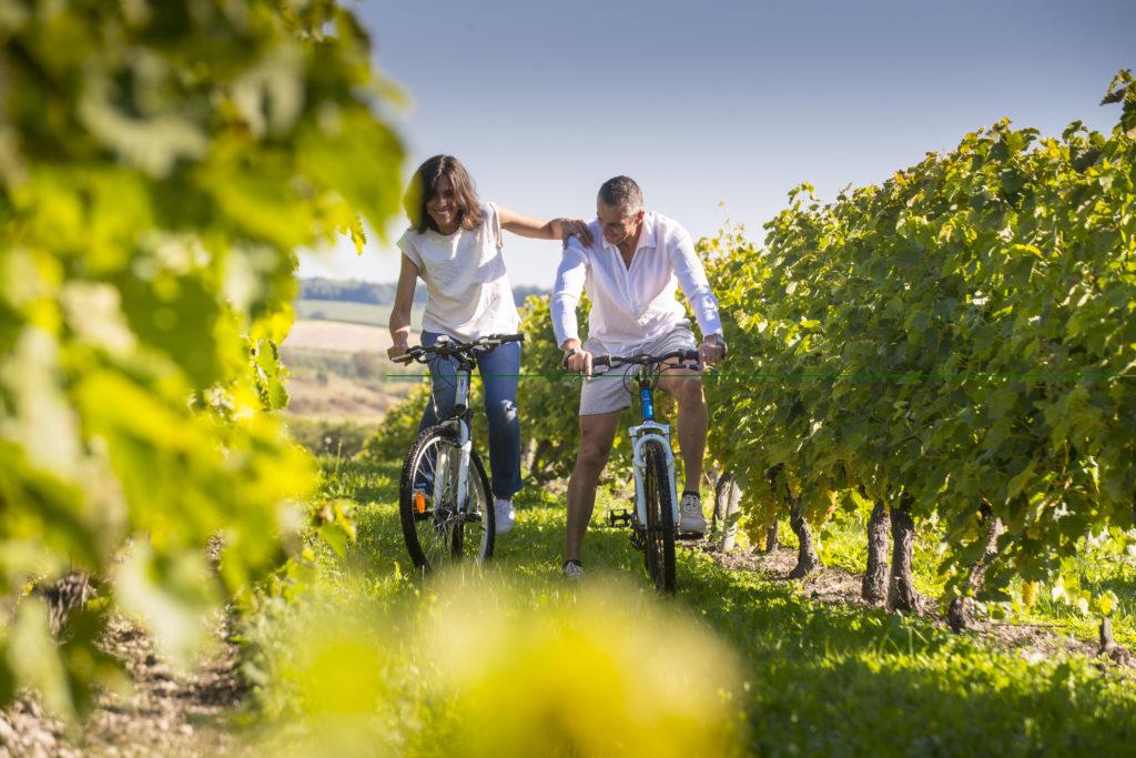 Balade à vélo en Sud Charente